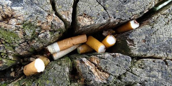 A partir du 1er juillet, il sera interdit de fumer dans les parcs de Strasbourg.