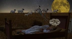 thérapie insomnie insomniaque fatigue somnifères comportement