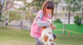 cynothérapie thérapie chien enfant trouble langage psychologie