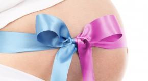 méthode choix sexe embryon bébé enfant