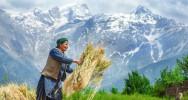 mutation génétique variante génétique adaptation altitude tibet tibétains hémoglobine dioxygène