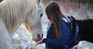 équithérapie thérapie cheval France thérapeuthes