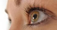 Dégénérescence maculaire liée à l'âge DMLA recherche médicale cause symptômes traitement