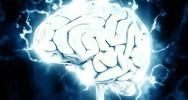 cerveau capacité stockage mémoire étude sport matière grise