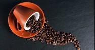 café caféine seuil tolérance dose variabilité psychoactive drogue