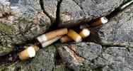 Strasbourg interdiction cigarette fumer espace vert fumeur non-fumeur