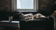 fatigue chronique système immunitaire syndrome maladie