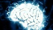 Il est possible de faire grossir le cerveau grâce au sport.