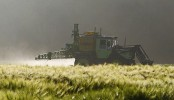 Le glyphosate est un herbicide utilisé en agriculture.